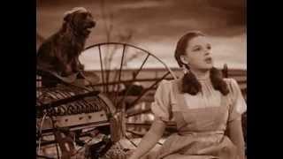 Der Zauberer von OZ - Die Dorothy Schlampe - Coldmirror Synchro
