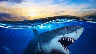 Subnautica | Part 1 | F*CK THE OCEAN!!