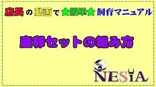 店長の動画で★簡単★飼育マニュアル【産卵セットの組み方】