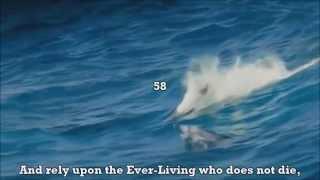 One Of The Most Beautiful Quran Recitation - Surah Furqan (25) Emotional Recitation