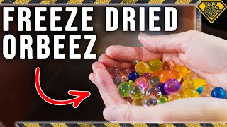 This is What Happens to Freeze Dried Orbeez