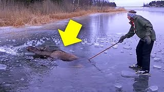 When Skaters Saw A Creature troubled within the Ice,They Grabbed An Ax And Jumped Into Action