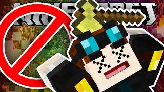 Minecraft | DON