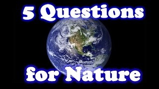 5 Questions for Nature