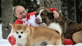 Why is Russia still in love with Putin?