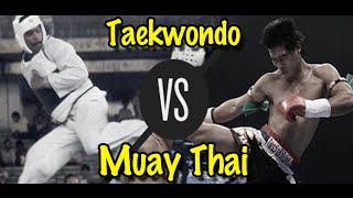 Muay Thai Champion vs. Taekwondo Black Belt | Lawrence Kenshin