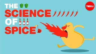 The science of spiciness - Rose Eveleth