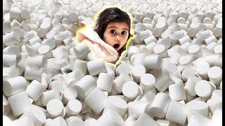 ELLE GETS STUCK IN 1 MILLION MARSHMALLOWS!!! (INSANE MARSHMALLOW POOL)