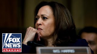 Ex-ICE director slams Kamala Harris for comparing ICE to KKK