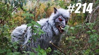 #214: Vreemd Dier in Dierentuin [OPDRACHT]