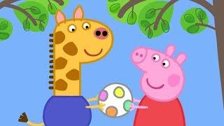 Peppa Pig English Episodes in 4K | Gerald Giraffe! | 1 Hour | Cartoons for Children #169