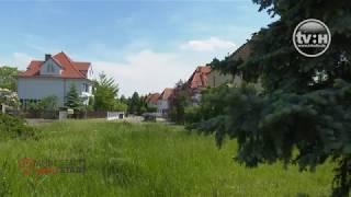 Meine Stadt, feine Stadt: Der Stadtteil Nietleben