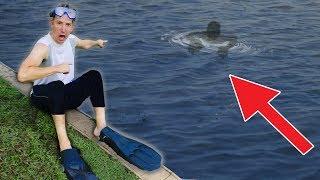 SCUBA DIVING for ABANDONED SAFE & POND MONSTER at SHARER FAM HOUSE (Exploring Underwater Pool)