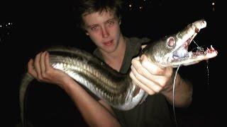 EP 2 - MONSTER EEL FISHING - Catch n Cook - Using Freshly Caught MULLET!   TDK