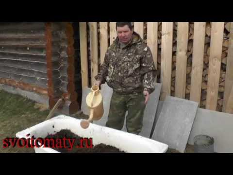 рыбалка как на даче развести червей