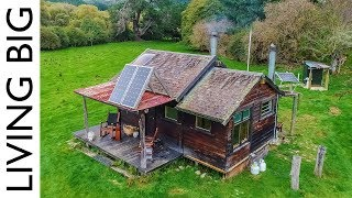 Off The Grid Cabin In New Zealand Paradise