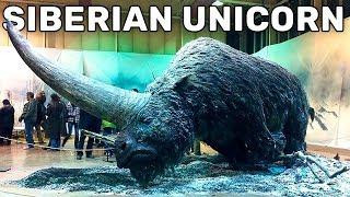 10 EXTINCT ANIMALS THAT WILL BE RESURRECTED SOON