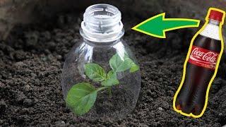 Top 5 Awesome Life Hacks for Plastic Bottle - Garden Hacks