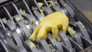 cooking with shredder : french fries