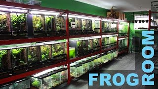 FROG ROOM TOUR- Jungle Jewel Exotics!