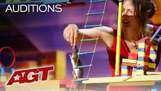 WHAT?! A Trained Rat Takes Over The AGT Stage! - America's Got Talent 2019
