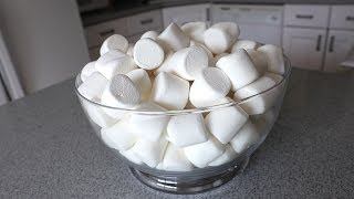 80 Marshmallows Eaten in 60 Seconds!! (Episode #21)
