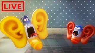 🔴 LIVE LARVA | GIANT EARS | Cartoon Movie | Cartoons For Children | Larva Cartoon | LARVA Official