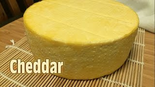 How to make Cheddar Cheese (Cloth Banded)