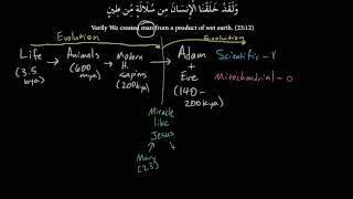 Islam, Homo sapiens Evolution, and the First Humans