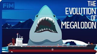 The Evolution of Megalodon and it