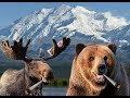Alaska Marijuana Control Board Meeting, ...mp3