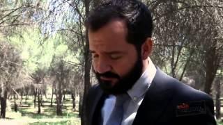 El Bosque, saga completa (solocomedia.com)