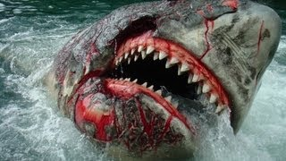 The Jaws Ride® in High Definition