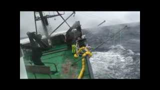 Longlining for Toothfish at Heard Island on Austral Leader II - Winter 2009