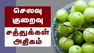 Amla Health Benefits ( Indian Gooseberry ) - Tamil Health Tips
