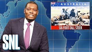 Weekend Update: Six-Foot-Tall Steer - SNL