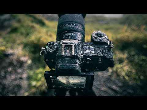 Nikon Z6 1 Year Later - I SWITCHED | My Favorite Hybrid Photo/Video Camera