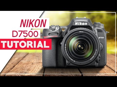 Nikon D7500 Tutorial - How To Setup Your DSLR