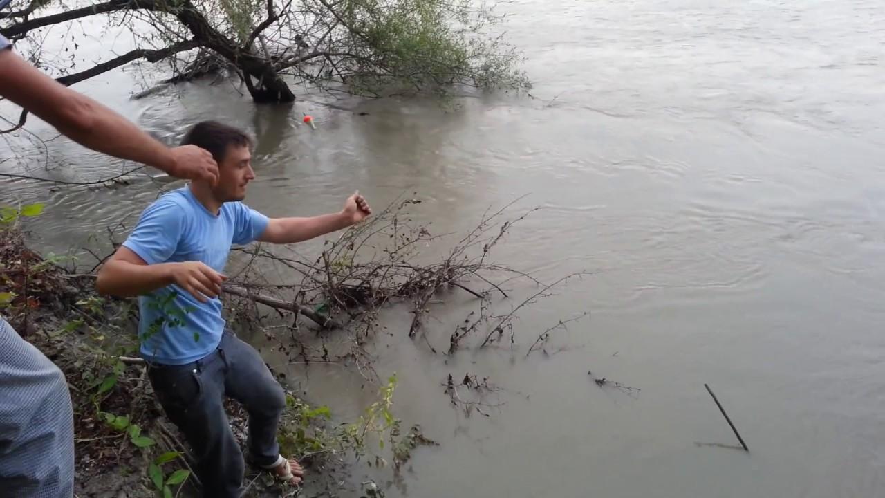 ловля сома на реке протока