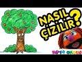 Ağaç Nasıl Çizilir? - Elma Ağacı -...