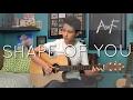 Ed Sheeran - Shape of You - Cover (Finge...