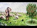 İbret Verici Dini Hikaye Yaşlı Çoban...