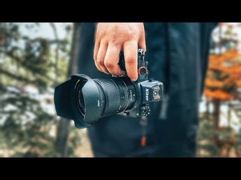 Nikon Z6 Review - From a Sony A7III User